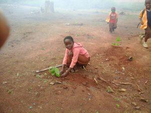 Tree planting 2105 1
